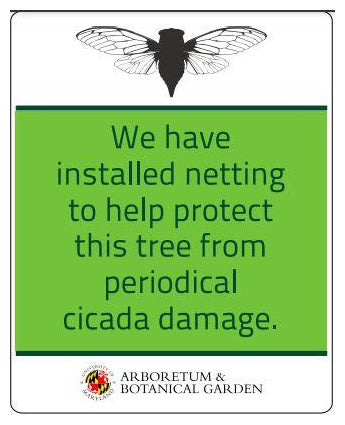 Informational sign about cicada netting